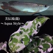 美伝流(龍)〜Aqua Style〜