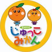 じゅっこみかん〜美味しい愛媛柑橘をお届け〜