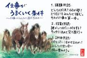 川井さんのプロフィール