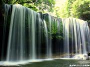 『滝と野草とスマイリーな日記』