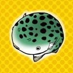 ☆ふぐまん☆ミドリフグ漫画と写真の館