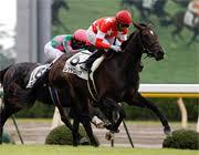 Horse owner 〜G1への道〜