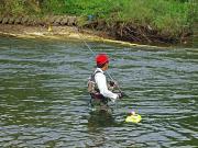 鮎釣りビギナーの独り言