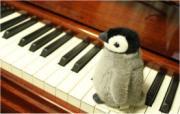 大人ポピュラーピアノ教室「音楽教室 響」