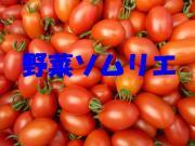 野菜ソムリエコミュニティしまね