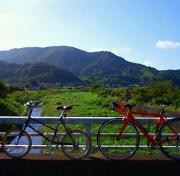 毛玉ライダーの自転車日記