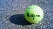 いっぽにほ テニスブログ