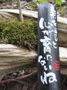 杉森神社の物語(神主日記、書道、絵、自然)