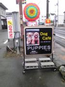 DC.PUPPIESの阿波cafe日記