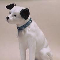 マイペース犬ソリ