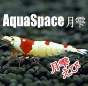 AquaSpace月雫
