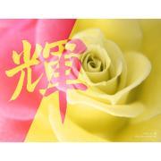 Seikou's Homepage〜晴香のお習字教室〜2