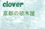 京都 剪定 伐採 造園植木屋ブログ