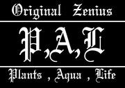 Original Zenius Plants,Aqua,Life
