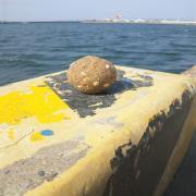 紀州釣り・フカセ釣りで黒鯛にグレを釣ろう!