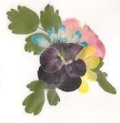 おし花名刺を作る照光のブログ