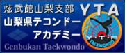 YTAテコンドー日記