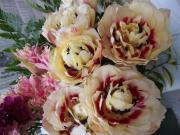 花とSiestaな毎日