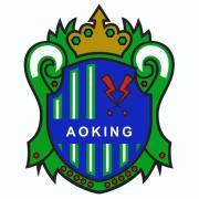 噂のフットサル団体:AOKING