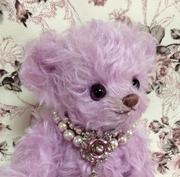 Palette Bear