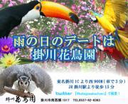 掛川花鳥園ブログ『鳥達の飼育日記』