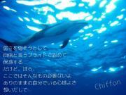 シーグラスの輝きをChiffonの人魚の涙Mermaid Tears〜