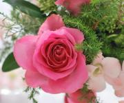 Cinq flora Blog  サンクフローラのブログ