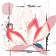 ANLUCE-インテリア雑貨ブログ