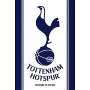 トッテナム・ホットスパー Spurs Crazy