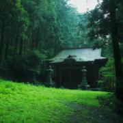 行って見たい神社とお寺