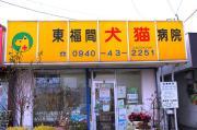 東福間犬猫病院のブログ