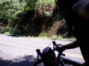 〜本日も自転車日和〜(・ω・。)