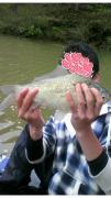 shou-yuの淡水釣り日記