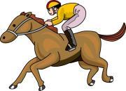 勝率アップの軸馬選び JRA 中央競馬