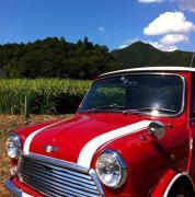 Rover Mini Cooper - Terap