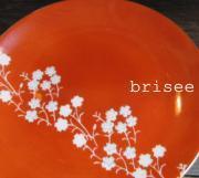 briseeさんのプロフィール