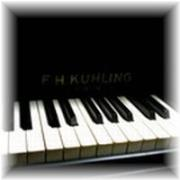 Shirasu Musikschule