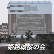 姫路城桜の会・取材日記(姫路城の桜開花情報)