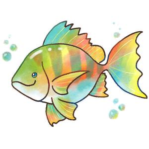神戸明石の釣りブログ