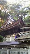 狹宮神社の杜