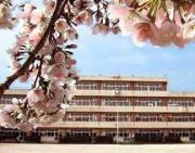 上小小学校1988・6−2卒業同窓会のブログ