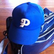 少年野球チーム城南フェニックスを応援するブログ