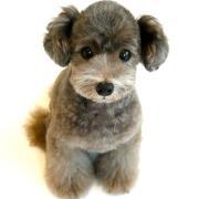 Doggie-Doスタッフブログ