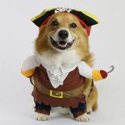 犬の写真家 高山健司さんのプロフィール