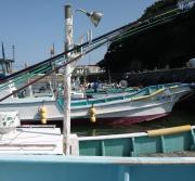 脱サラ新米漁師のわいわい日記
