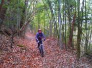 神戸から自転車に乗って