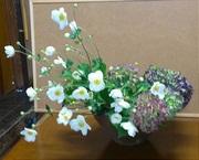日々の生け花