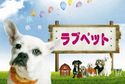ペットシッターLOVE PET『Happy Days』