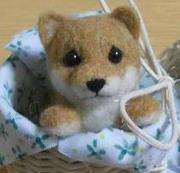 petit 柴 lapin〜羊毛フェルトの小さな仲間〜