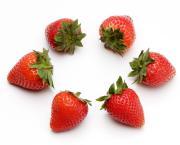 苺の友の関西食べあるき